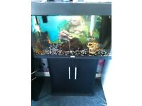 Aquarium for sale only 100 all good condition perfectly working order sold as seen