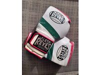 Cleto Reyes 16 oz sparring gloves