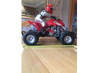 Remote controlled quad bike