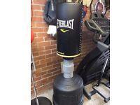 Everlast Free Standing Punch bag