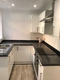Fully refurbished house to rent