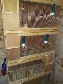 Budgie box with nest bix