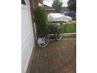 ladys mountian bike with luggage rack