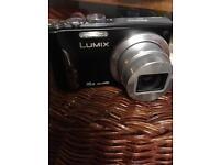 Panasonic lumix with case