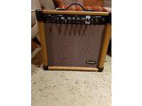 Rocktronic Acoustic Mic/Guitar Amp