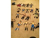WWE Wrestlers & Ring