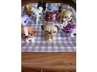 Lps Littlest pet shop dog bundle