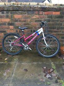 Woman's Raleigh Bike with optional basket