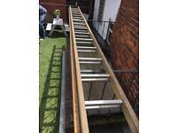 Huge ladder