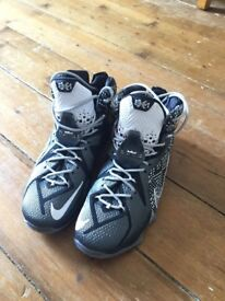 Lebron 12 black history month edition size 10