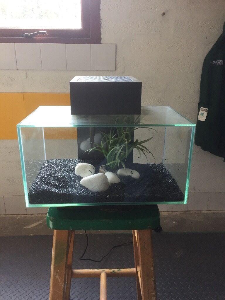 Fish aquarium kidderminster - Fish Tank Fluval Edge