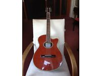 Tanglewood Discovery Deluxe Guitar for sale