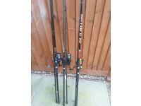 Carp rods x3