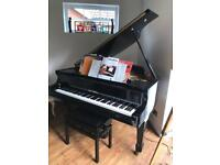Grand Piano 5ft casing