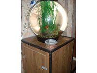 biorb 60 litre fish tank