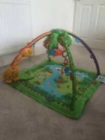 Fisher Price - baby gym