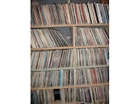 Massive CD / Record Collection for sale