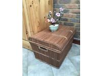 Vintage Bamboo Cane Trunk Coffee Table