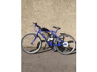80cc Motorised Push Bike