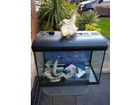 Large fish tank perfect order 70 litres