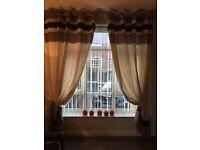 Cream & Chocolate Brown eyelit curtains