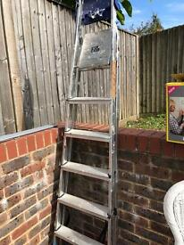 Step Ladder (6 ft)