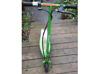 RAZOR E200 electric scooter.Green