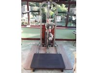 Body solid multi hip station