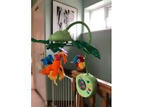 Fisher-Price Rainforest Peek-a-boo Leaves Mobile