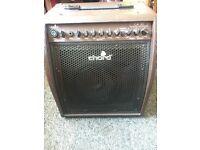Chord 30W acoustic guitar amplifer