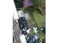 JOB £70 Waste cleaner & tip run