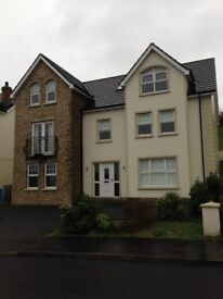 Large 5 bed house for rent in Oldbridge, Old Strabane Road, Waterside