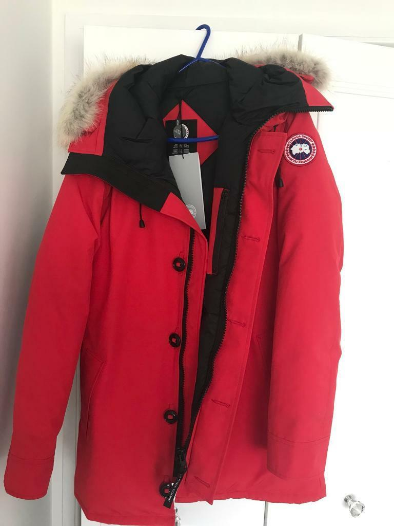 canada goose on gumtree