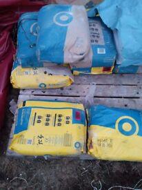 8 25 kg bags cement