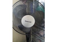 Fan for sale