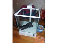Desk top fish tank