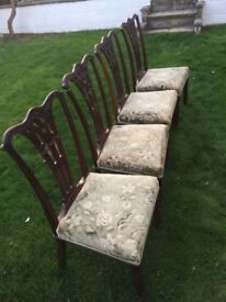 Gorgeous antique Victorian chairs
