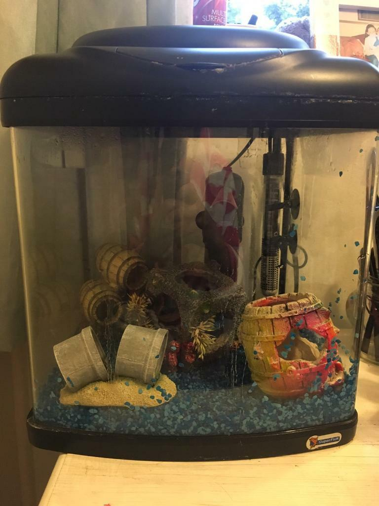 Fish tankin Woking, SurreyGumtree - Small fish tank. About 25 ltrs. Comes with thermostat, stones & lots of accessories. Has a filter but needs foams replacing