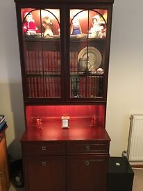 Display Unit with Lighted upper section with drawer and cupboards beneath
