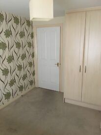 Beautiful 4 bed house DSS (WELCOME)