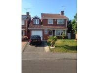 IMMACULATE DOUBLE ROOM TO RENT IN FRIENDLY FAMILY HOME