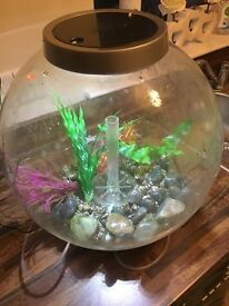 Biorb 30 litre fish tank for £45 (RRP £113)