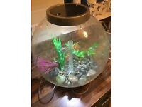 Biorb 30 litre fish tank for £45 (RRP £113)