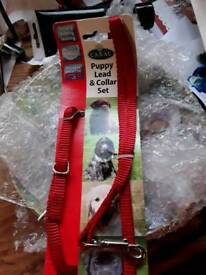 **** PUPPY LEAD AND COLLAR SET ***
