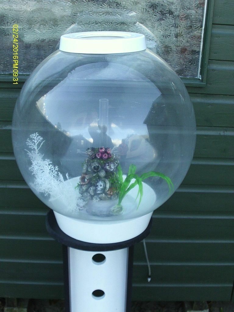 60 litre white biorb round fish tank complete with black for Circular fish tank