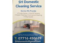 SH domestic cleaning service