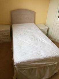 Single bed base and velour headboard