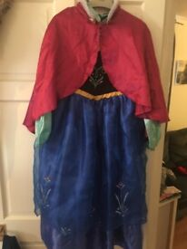 Frozens Ana dress