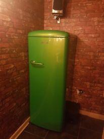 Gorenje green fridge