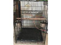 Various Bird Cages